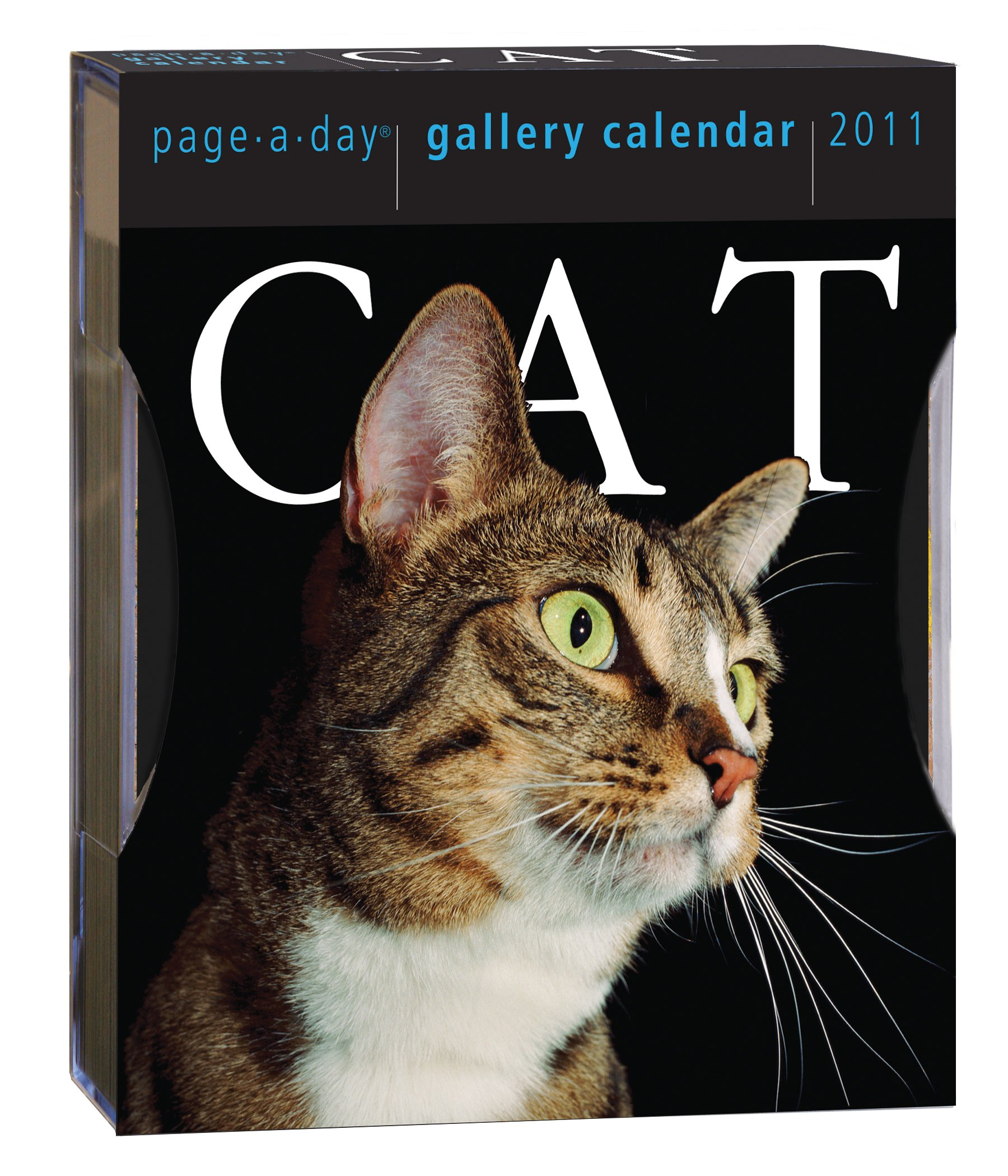 Cat Page-A-Day Gallery Calendar 2011